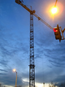 Crane at twilight