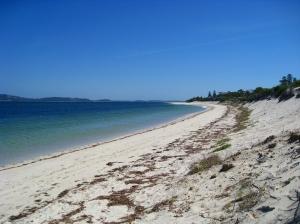WW beach