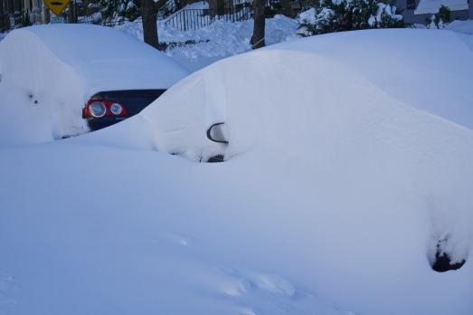 cars hidden